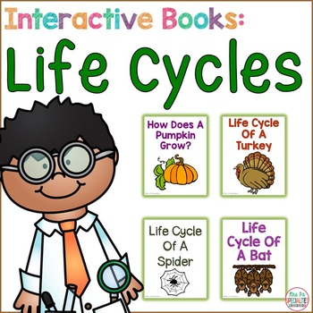 Life Cycle Interactive Books