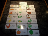Life Cycle Laminated Flash Cards.  Science Flash Cards. Fr