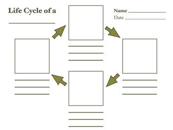 Life Cycle Map
