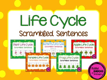 Life Cycle Scrambled Sentences Bundle