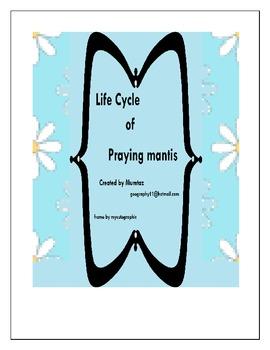 Praying Mantis : Life cycle of Praying Mantis :