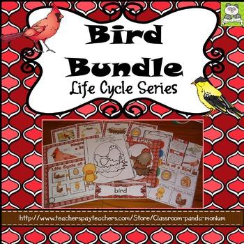 Bird Life Cycle Bundle