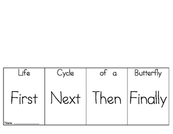 Life Cycle of a Butterfly Foldable
