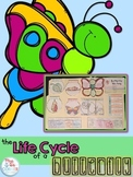 Life Cycle of a Butterfly Lapbook {with 12 foldables} Butt