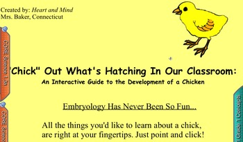 """Life Cycle of a Chick: """"Chick Out"""" What's Hatching"""