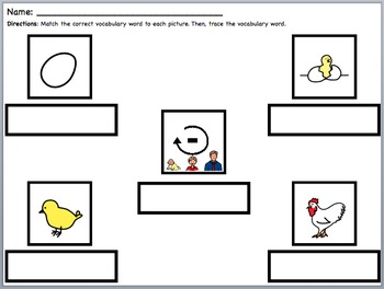 Life Cycle of a Chicken (Leveled Supplemental Materials)