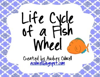 Life Cycle of a Fish Wheel