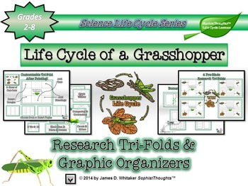 Life Cycle of a Grasshopper Research Tri-Folds an Graphic