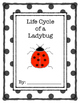 Life Cycle of a Ladybug Report Template