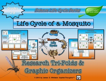 Life Cycle of a Mosquito Research Tri-Folds and Graphic Or