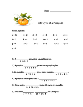 Life Cycle of a Pumpkin Decoder