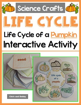 Life Cycle of a Pumpkin Craft - Interactive Crafts - Scien