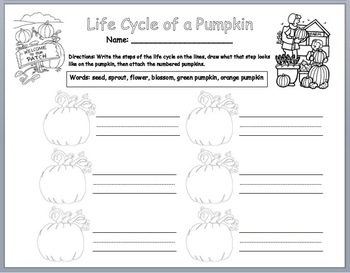 Life Cycle of a Pumpkin - Sequencing