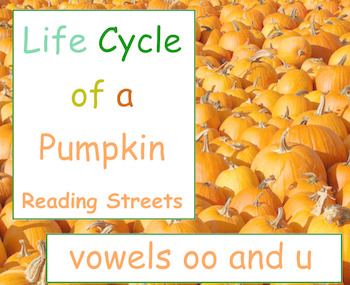 Life Cycle of a Pumpkin Spelling Words