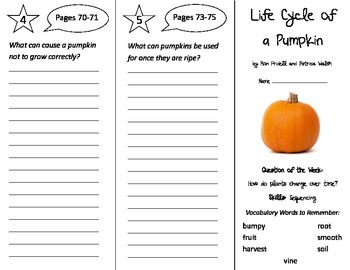 Life Cycle of a Pumpkin Trifold - Reading Street 2nd Grade