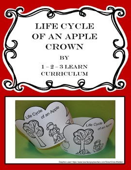 Life Cycle of an Apple Crown