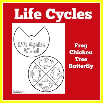 Life Cycles Craft | Life Cycles Activity | Life Cycles Science