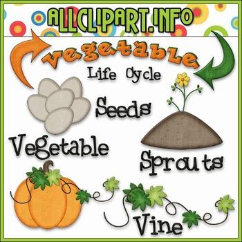 TPT EXCLUSIVE BUNDLE - Life Cycles Clip Art - Vegetables