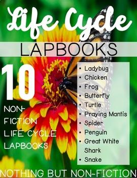 Life Cycle Lapbooks ::BUNDLE::