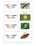 Life Cycles Memory Game