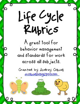 Life Cycles Rubrics