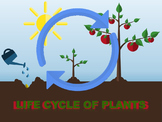 Life Cycles of Plants Animated PowerPoint Readers' Theater