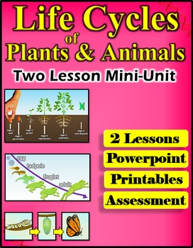 Life Cycles of Plants and Animals Mini Unit 2 Lessons, PPT