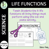 Life Functions of Living Things