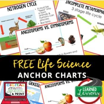 Life Science Sampler 5 FREE Anchor Charts