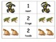 Special Education: Equivalent Forms using Invertebrates