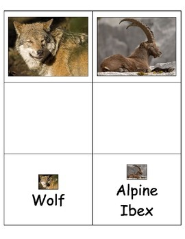 Special Education: German Animals Match