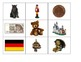 Special Education: Germany Bingo