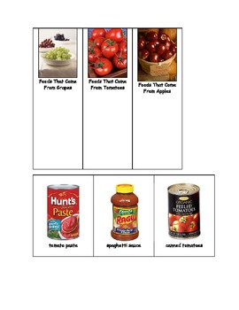 Life Skills: Grapes, Tomatoes or Apples