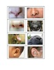Life Skills: Noses vs. Ears