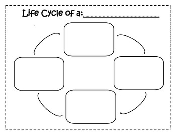 all worksheets life cycle worksheets printable worksheets guide for children and parents. Black Bedroom Furniture Sets. Home Design Ideas