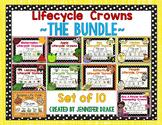 Lifecycle Crowns  ~BUNDLE~