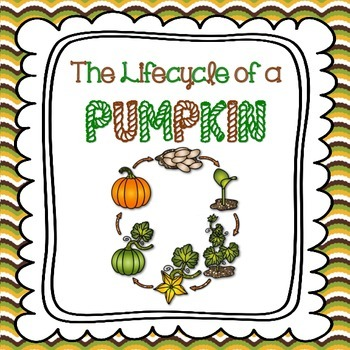 Lifecycle of a Pumpkin (Halloween, Thanksgiving and Fall A
