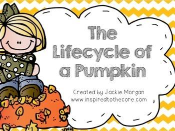 Lifecycle of a Pumpkin Set