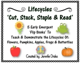 Lifecycles 'Cut, Stack, Staple, Read' Early Emergent Flip