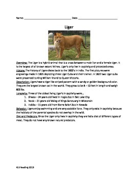 Liger - Lion & Tiger Hybrid - Review Article Facts Info Qu