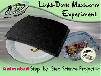 Light-Dark Mealworm Experiment