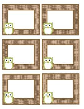 Light Green/Brown Owl Book Bin Labels