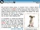 Literary Devices: Theme - MAC Gr. 5-8