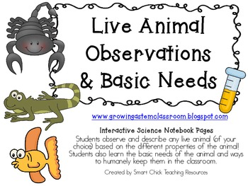 Live Animal Observations & Basic Needs Pack ~ Interactive