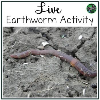 Live Earthworm Lab Activity