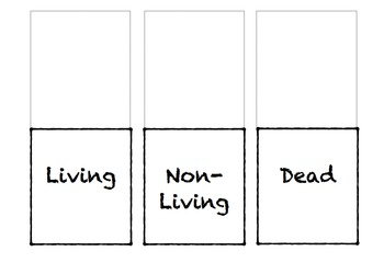 Living, Non-Living, or Dead Presentation with Interactive