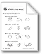 Living Things: Unit Review/Hands-on Activity