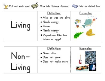 Living and Non-Living vocabulary cards