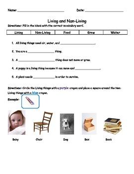 Living and Non-living Test/Assessment/Worksheet