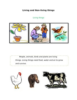 Living and Non living things workbook for 2nd grade